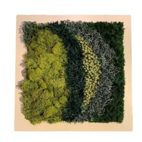 green senses