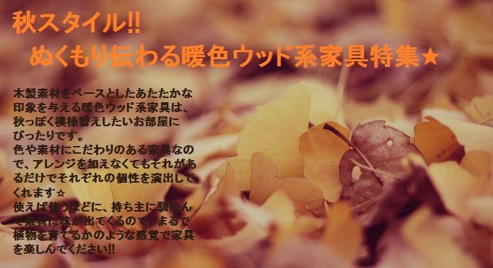 Autumn_image2