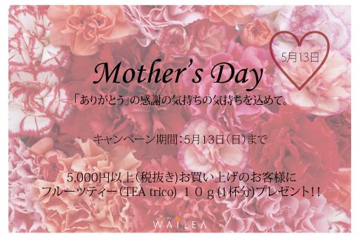 web【変更】母の日-一般客用