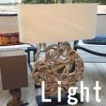 light icon-2white